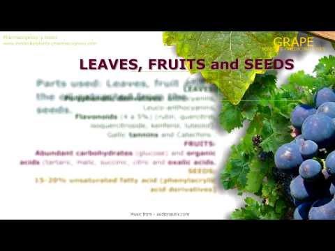 Grape benefits (Vitis vinifera). Medicinal properties attributed to the Grape plant.