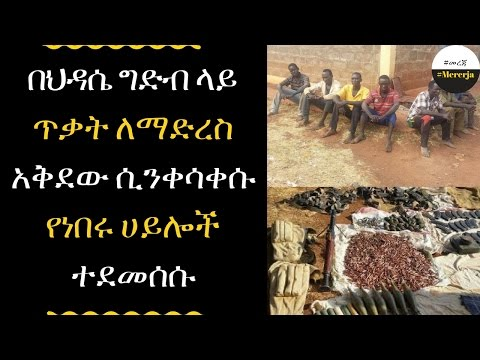 ETHIOPIA - 20 armed forces planned to attack the hidassie dam destroyed by  Ethiopia military