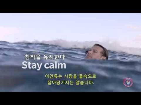 How to Survive a Rip Current (Korean subtitles)