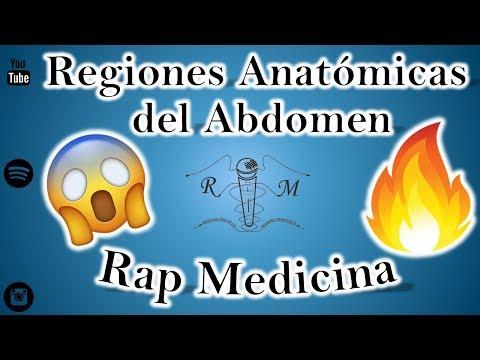 Regiones Anatómicas del Abdomen - R4 - Rap Medicina