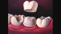 Dentist Milton Ontario.