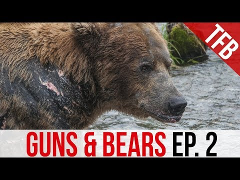 Guns & Bears: Glock 10mm Or .44 Magnum For Protection?