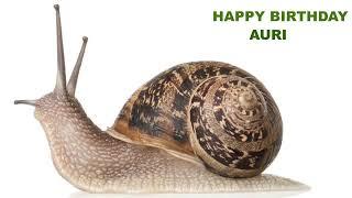 Auri  Animals & Animales - Happy Birthday
