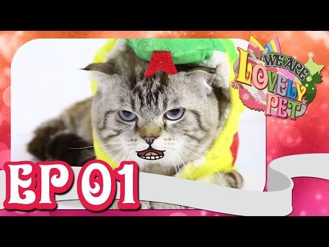 """We Are Lovely Pet - """"รายการสัตว์น่ารัก"""" [Ep.1] 18+"""