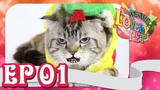 """We Are Lovely Pet - """"รายการสัตว์น่ารัก"""" [Ep.1] 18+ l VRZO"""