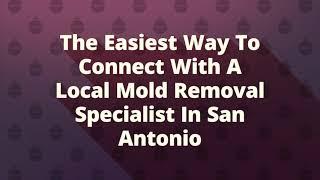 All US Mold Removal in San Antonio TX
