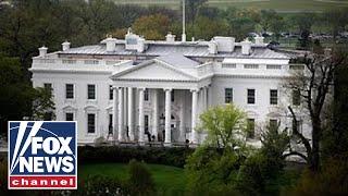 Melania Trump welcomes the White House Christmas tree