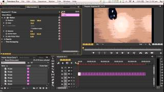 making a stop motion animation in premiere pro tutorial with downloadable actual images