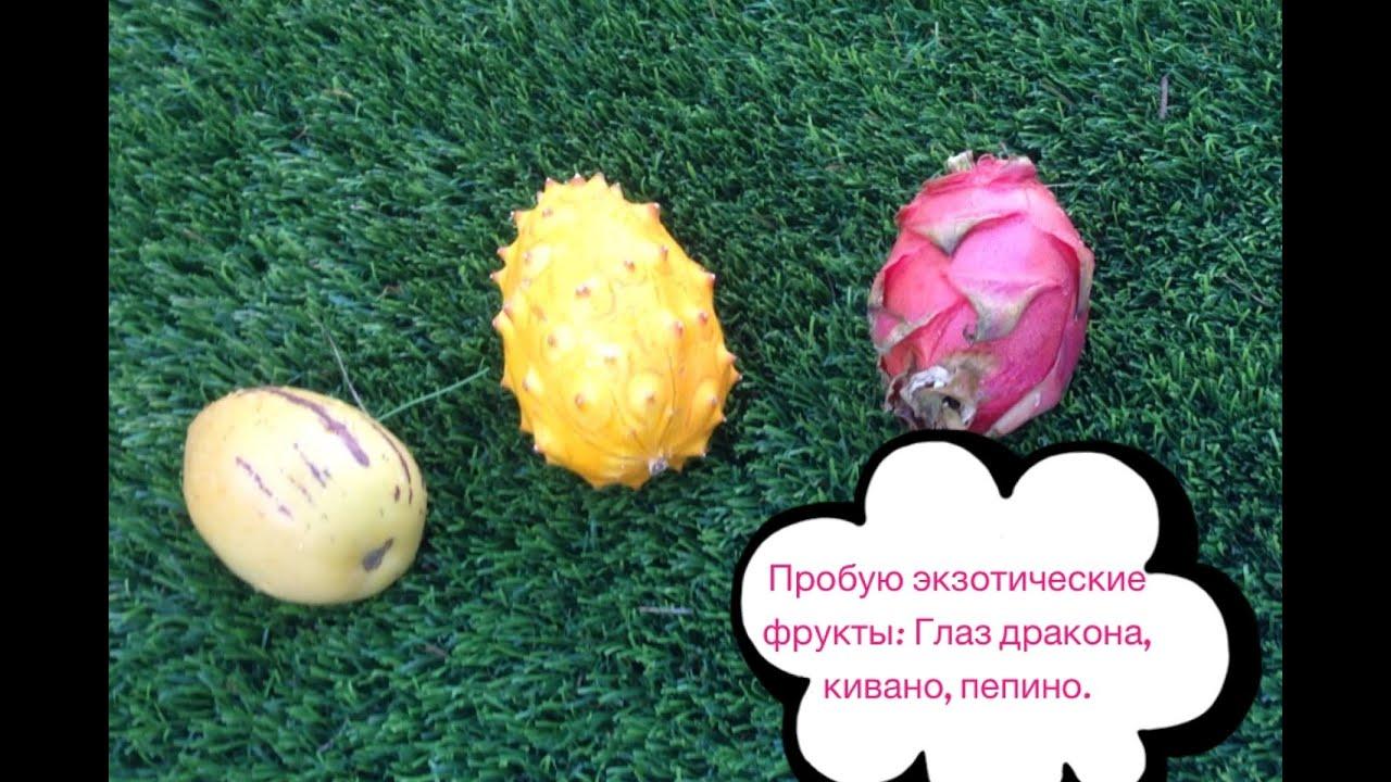 Пепино особенности выращивания и размножения  Ботаничкаru