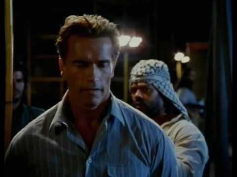 True Lies is listed (or ranked) 43 on the list The Highest Grossing 90s Movies