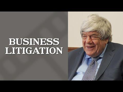 Business Litigation | Top Los Angeles Commercial Litigation Attorney | Donald S. Burris