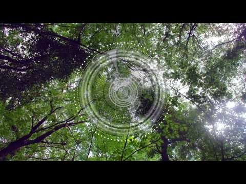 Kris Davis - Aura [Soulfooled]