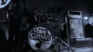 DARK SHADOWS  Sleeping With A Vampire