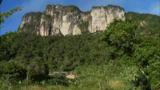 Madagaskar: Der Zug des Lebens - Fahrt in fremde Welten
