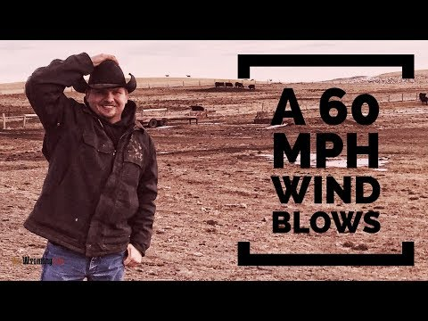 Wind Caused Problems - Project List