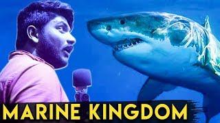 115 கோடி செலவில் முதல் சுரங்க மீன் அரங்கம் : VGP Marine Kingdom Review