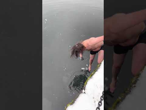 Man-Jumps-Into-Icy-Canadian-Harbour-to-Save-His-Phone