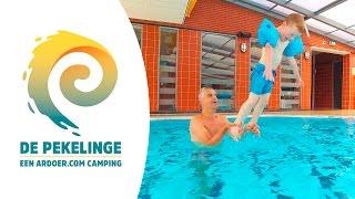 Zwembad - Camping De Pekelinge