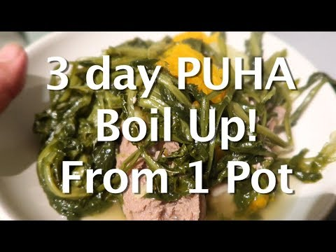 Puha Maori Boil Up For 3 Days