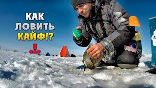 Такая РЫБАЛКА всегда будет в КАЙФ Зимняя рыбалка