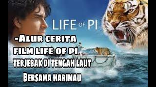 Film Alur Cerita LIFE of PI   Bertahan Hidup Di Tengah Laut
