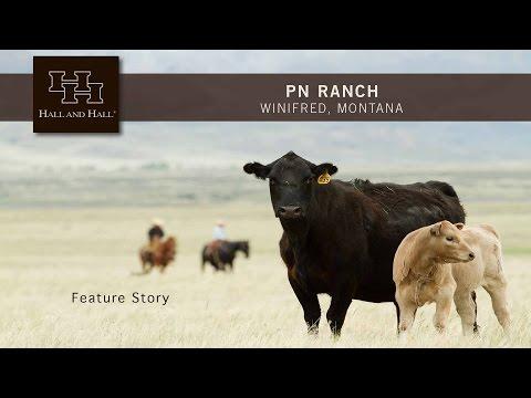 PN Ranch - Winifred, Montana