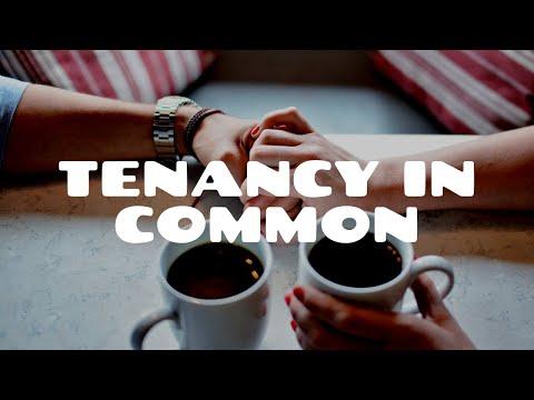 Tenancy in Common (Part 1)   Land Law