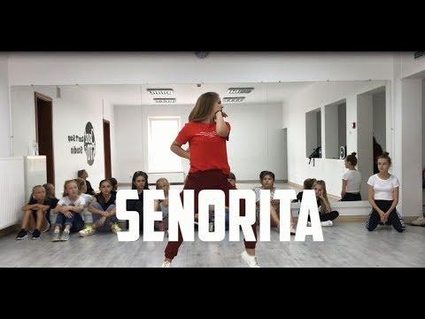 shawn-mendes,-camila-cabello---señorita-|-choreography-by-igor-kmit
