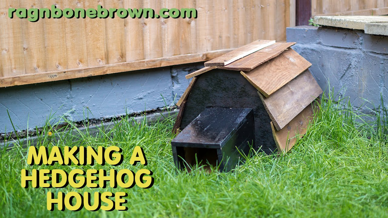 making a hedgehog house youtube. Black Bedroom Furniture Sets. Home Design Ideas
