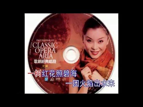 珊瑚颂 - 童丽 Praise song to the Corals - Tong Li