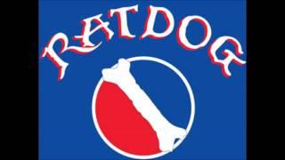 RatDog - Bury Me Standing
