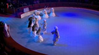 International Circus Festival - Dogs act Thumbnail