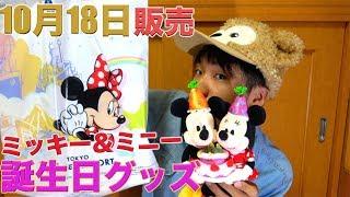 【今年はミニーもお祝い!】11月18日スクリーンデビュー!ミッキーとミニーの誕生日記念グッズを購入品紹介 東京ディズニーランド