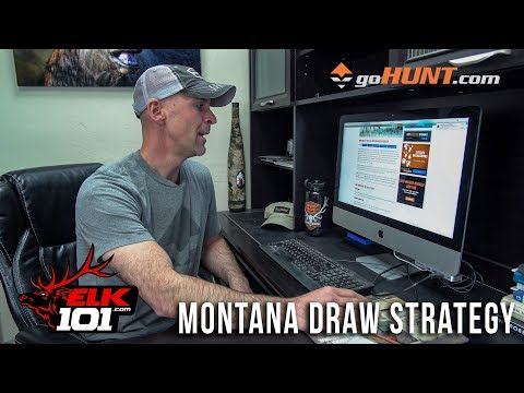 Why Is Montana A Great Elk Hunting Destination?