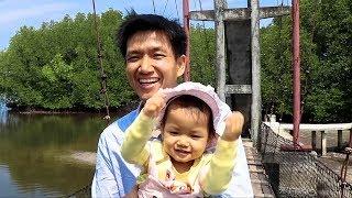 Visiting Mangrove Forest at Koh Kong