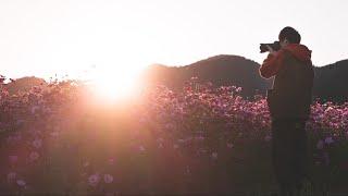 逆光で撮るだけで写真のレベルが一気にあがる!?プロみたいな写真の簡単撮影方法とは!
