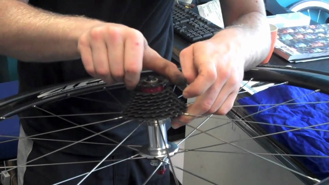 Changing Cassette Or Cogs On Rear Wheel Of Bike Youtube