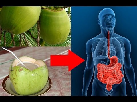 DRINKING COCONUT WATER FOR 2 WEEKS HELP YOU HEALTHIER