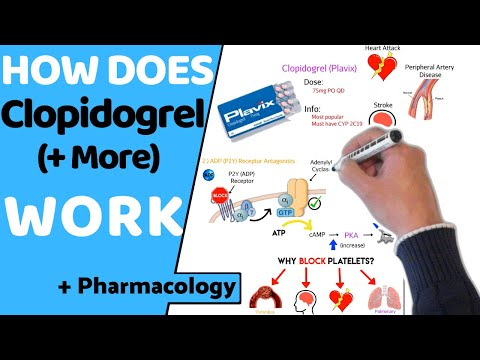 How Does Clopidogrel (Anti-platelets) Work? (+ Pharmacology)