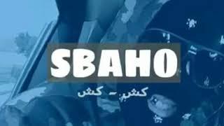 LFERDA - SBAHO (OFFICIEL AUDIO)