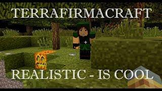 TerraFirmaCraft без прикрас #23: возврат к истокам