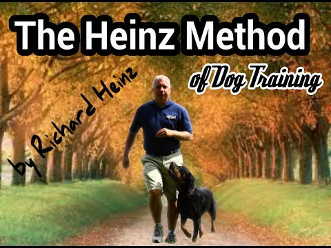 How to teach the 'Heel' or Finish command to your dog