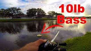 The Biggest BASS of My LIFE!!!! (10+ POUNDS)