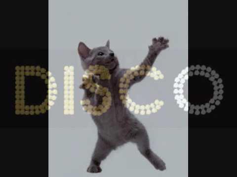 House Of Glass Feat. Giorgio Giordano  - Disco Down 2008 Remixes Part 2 (Samuele Sartini Club Mix)