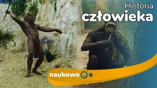 Historia człowieka - od Australopiteka do Homo sapiens