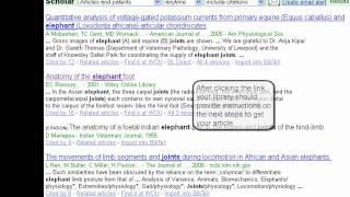 Using Google Scholar (CLIP)
