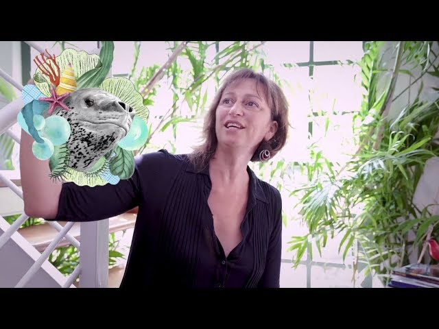 Telecine | Laís Bodanzky faz Cinema #MulheresFazemCinema