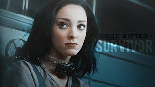SURVIVOR    The Gifted