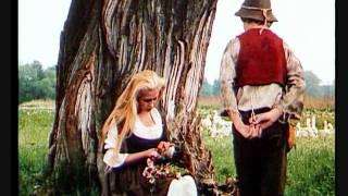 Video Die  Geschichte von der Gänseprinzessin und ihren treuen Pferd falada_0001.wmv download MP3, 3GP, MP4, WEBM, AVI, FLV September 2017