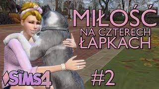 #2 - Nowy pracownik | Miłość na czterech łapach | The Sims 4
